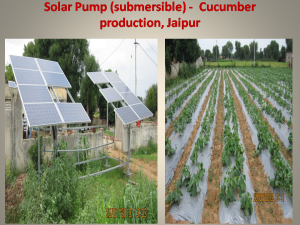 Mulching and drip irrigation with sloar pump