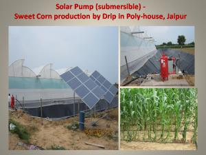 Solar pump, drip, shadenet